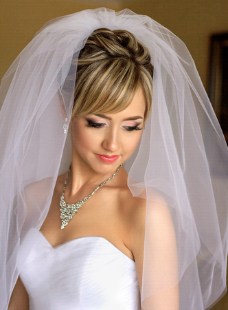 Beautiful veil covers brides shoulders