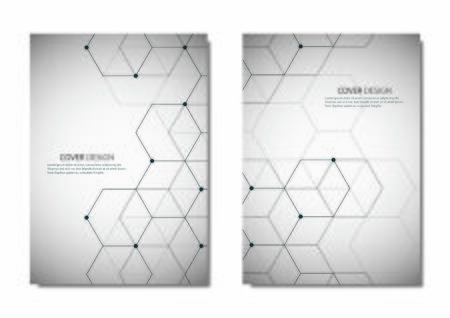 Abstract vector polygonal geometric shape with hexagon background