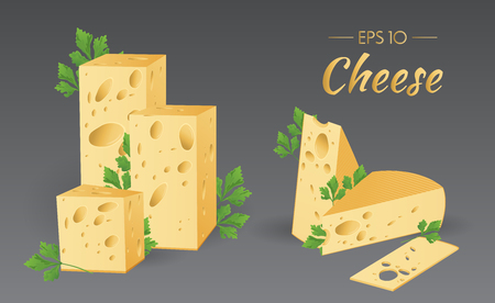 cheez: Vector illustration. Cheese with parsley. Milk product. Set of different pieces of cheese. Food collection Illustration