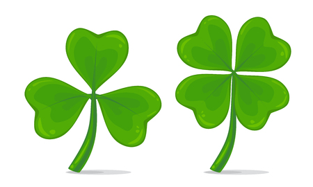 Vector illustration of four-leaf and trifoliate clover isolated on white background. Realistic lucky clover leaves. St. Patricks day symbol Illustration