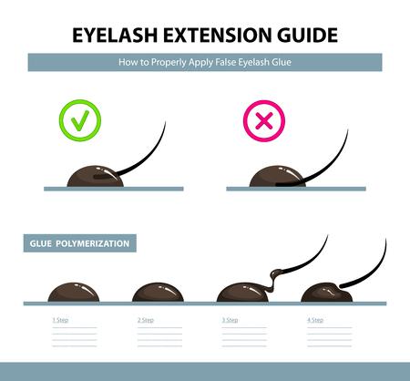 Wimpernverlängerungsführung. Wie man falschen Wimpernkleber richtig anwendet. Kleben Sie die Polymerisation Schritt für Schritt. Infografik-Vektor-Illustration. Trainingsposter