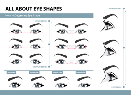 So bestimmen Sie die Augenform. Vektorgrafik