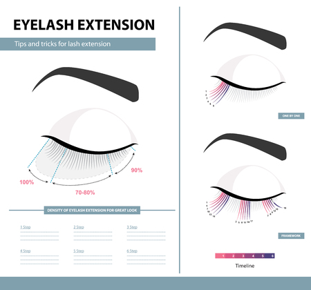 Eyelash extension guide Training poster