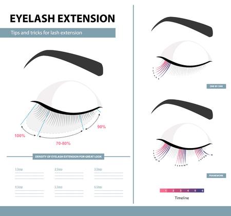 Eyelash extension guide Training poster