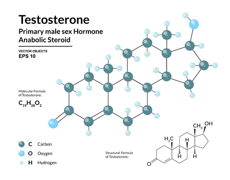 Testosterone. Primary Male Sex Hormone. Structural Chemical Molecular Formula and 3d Model. Atoms are Represented as Spheres with Color Coding. Vector Illustration Ilustração