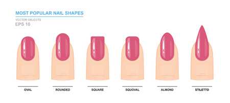 Most popular nail shapes. Different kinds of nail shapes. Manicure Guide. Vector illustration  イラスト・ベクター素材