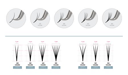 Extensions de cils volumiques. Cils artificiels. Master of Eyelash Extensions fonctionne avec des pinces à épiler. Illustration vectorielle. Modèle pour le maquillage et les procédures cosmétiques. Affiche de formation. Guider