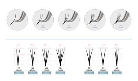 Volume Eyelash Extensions. Artificial Lashes. Master of Eyelash Extensions works with Tweezers. Vector Illustration. Template for Makeup and Cosmetic Procedures. Training poster. Guide