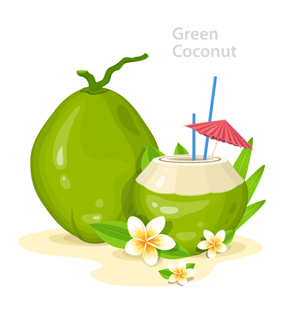 Green Young Coconuts. Fresh Coconut Cocktail with Plumeria Flowers, straws and Umbrella. Summer Time Vacation Attribute. Banner Design Concept with Place for Text. Vector Illustration