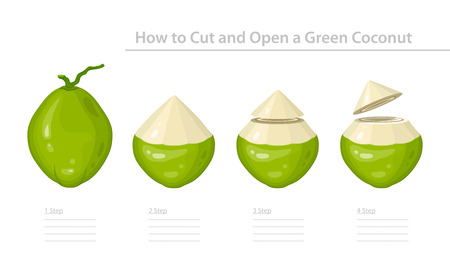 How to Cut and Open a Green Young Coconut. Step-by-Step Instruction. Vector Illustration Ilustração
