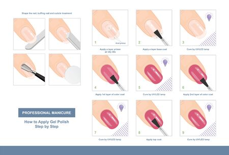 How to Apply Gel Polish Step by Step. Professional Manicure Tutorial. Vector illustration