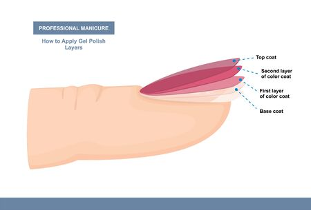 How to Properly Apply Gel Polish. Layers. Professional Manicure Tutorial. Vector illustration  イラスト・ベクター素材