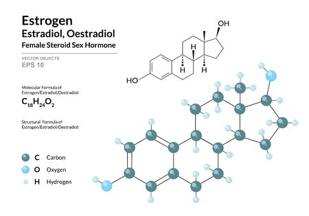 Hormone Estrogen (Estradiol, Oestradiol). Structural Chemical Formula and Molecule 3d Model. Atoms with Color Coding. Vector Illustration