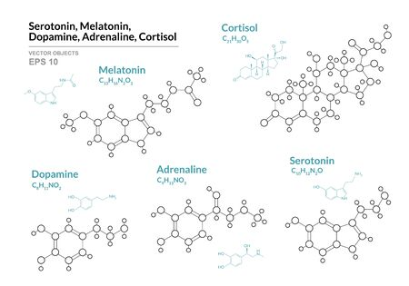 Serotonin, Melatonin,  Dopamine, Adrenaline, Cortisol. Hormones. Structural Chemical Formula and Molecule Model. Line Design. Vector Illustration