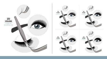 Volume Eyelash Extension for Most Attractive Look. Woman Eye with Long Thick Eyelashes. 1D - 5D Volume. Training Poster. Guide. Infographic Vector Illustration   イラスト・ベクター素材