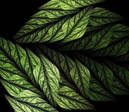 Fern. Abstract fractal in green color on the black background. Computer-generated image.