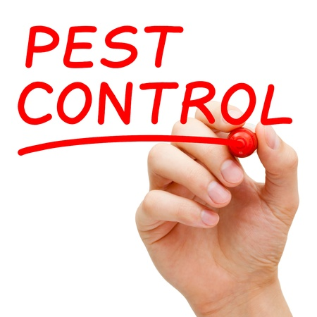 Hand writing Pest Control with red marker on transparent wipe board.