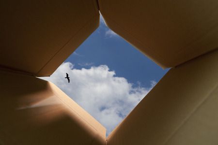 thinking outside the box: Concept image about unconventional and different thinking outside the box.