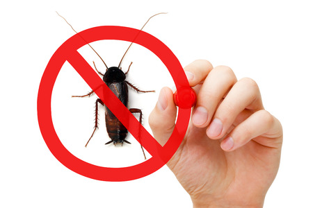 disease control: Hand drawing pest control concept with red marker. Prohibition sign on a cockroach. Stock Photo