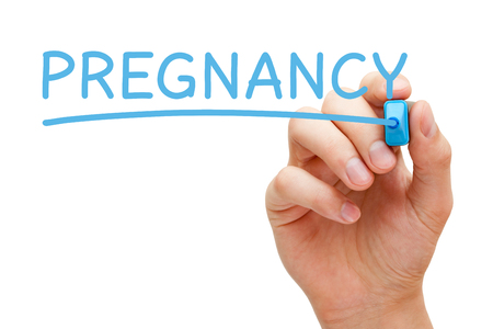 fetation: Hand writing Pregnancy with blue marker on transparent wipe board isolated on white background. Stock Photo