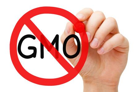 GMO Prohibition Sign Concept Stock Photo