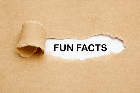 Fun Facts Torn Paper Concept Stock Photo