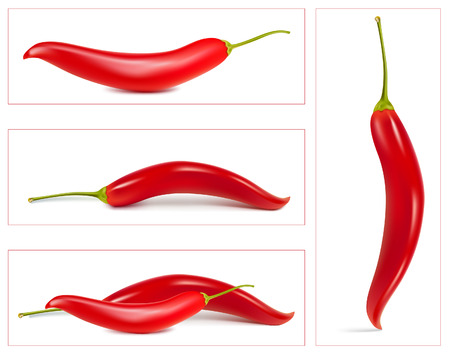 cayenne: Red hot chili pepper. Illustration