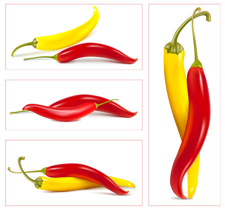 pimenton: Chiles calientes. Vectores