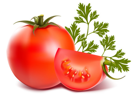 Ripe fresh tomatos with parsley Ilustracja