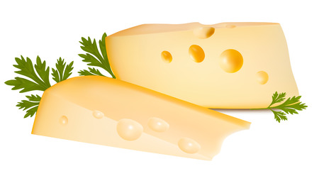 holand: Vector illustration. Cheese with parsley.  Illustration