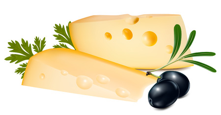 porous: Vector illustration. Cheese with olives.