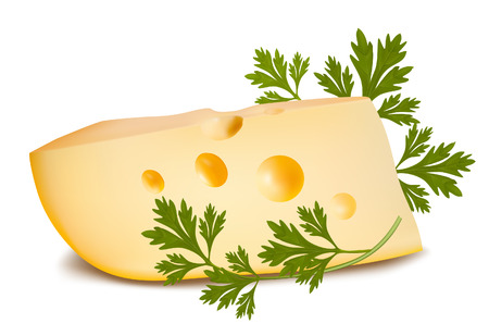 shred: Vector illustration. Cheese with parsley.  Illustration