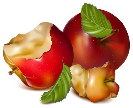 nip: Vector. Apples