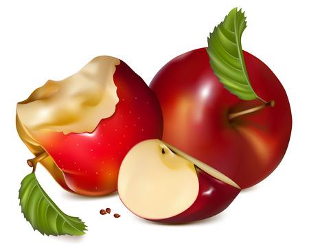 apple core: illustration. Apples.