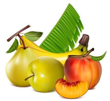 mellow: illustration. Fruits. Illustration