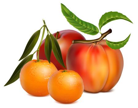 Ilustración de frutas.