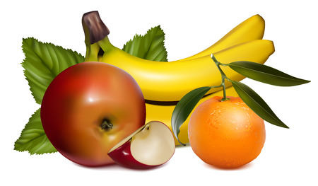 mandarins:  illustration of fruits. Illustration