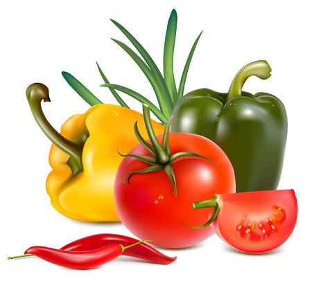 Verduras. Ilustración de vector