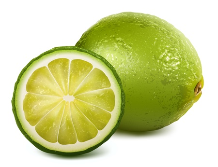 lemon lime: di lime fresco Vettoriali