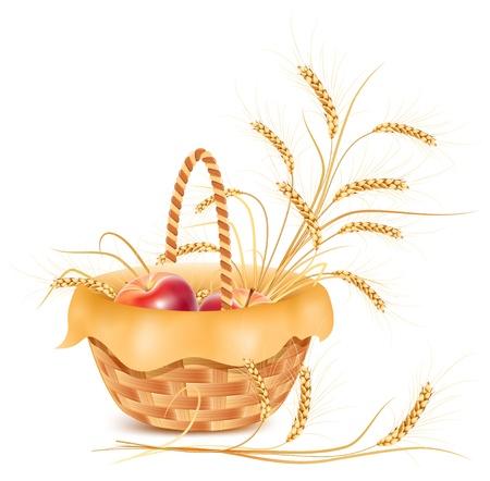 canasta de frutas: Vector. Espigas de trigo y manzana en la cesta. Vectores