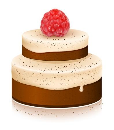 dates fruit: Pastel de vector con frambuesas maduras