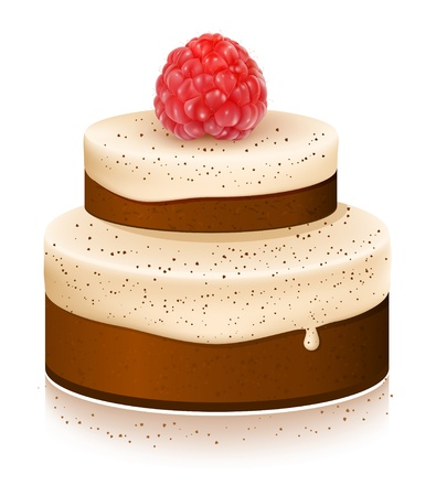 Vector cake with ripe raspberries