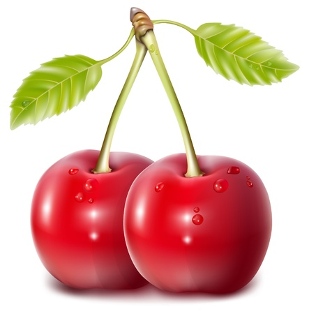 Vector. Cherries with water drops. Imagens - 10053376