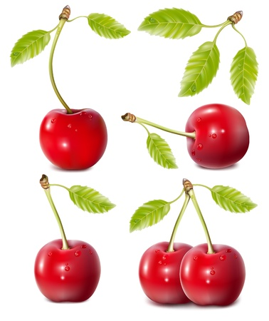 Vector illustration. Cherries with water drops. Illustration