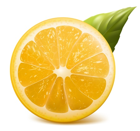 citric: Vector. Fresh lemon.