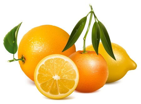 lemon slices: Vector tropical fruits with leaves