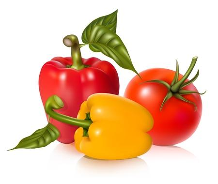 verduras verdes: Tomate de vector y pimientos. Vectores