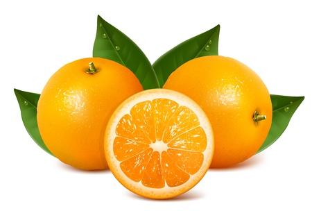 naranjas fruta: Frescas naranjas maduras vectorial con hojas.