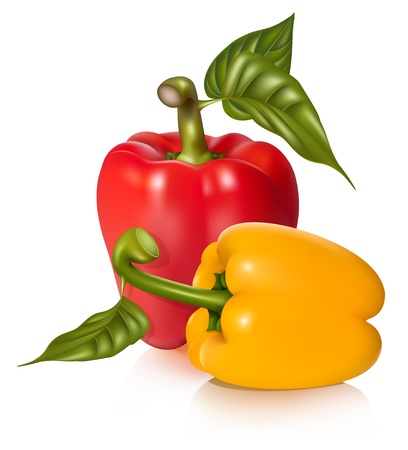 Vector illustration of peppers with leaves.