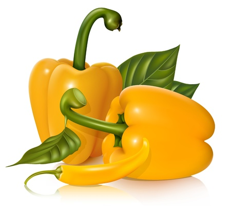 hot pepper: Vector  yellow sweet and chili peppers with leaves.